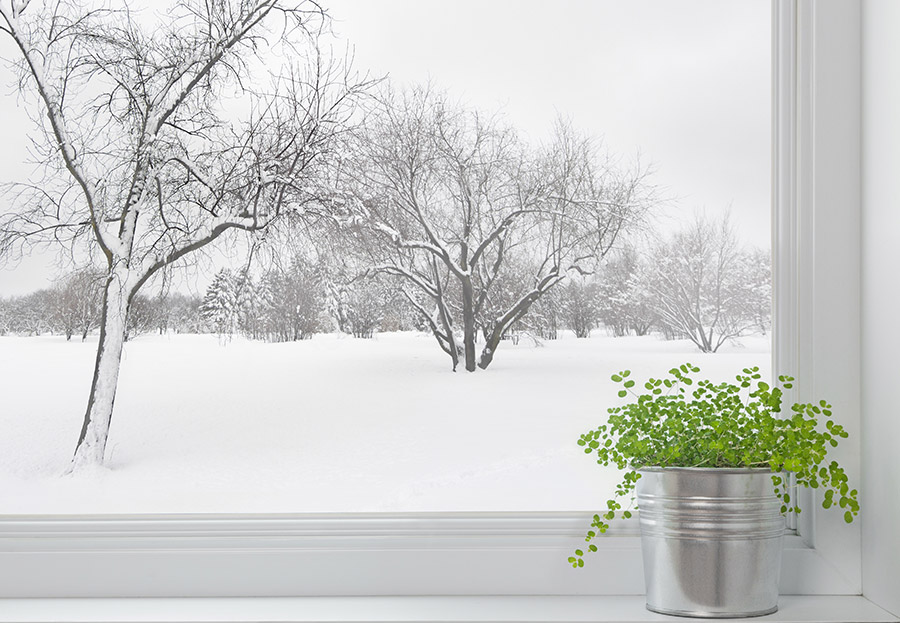 Keep your conservatory warmer in the winter